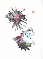 Tsururtaro Kataoka Postcard Unuseded Good Condition - Paintings