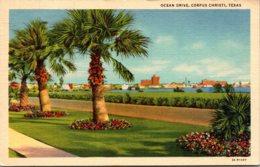 Texas Corpus Christi Ocean Drive 1949 Curteich - Corpus Christi