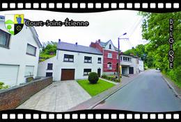 Postcard, REPRODUCTION, Municipalities Of Belgium, Streets Of Court-Saint-Étienne 13 - Cartes Géographiques