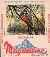 Ancien BUVARD Illustré Biscottes MAGDELEINE à GRANVILLE . Martin Pècheur - Biscottes