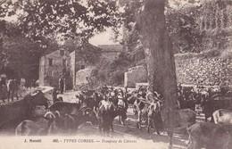 TYPES CORSES - Troupeau De Chèvres - Corse