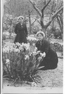 TYPES De CaTALANES (1919) - Perpignan