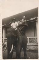 Photo. Militaire : Siem-reap - Cambodge : Ton Poulet Sur L'éléphant : 1948 : Format 8,6cm X 6cm - War, Military
