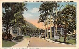 "M07875 ""PALM AVENUE,HOSPITAL GROUNDS,ANCON CANAL ZONE"" ANIMATA  CART ORIG. NON SPED. - Panama"