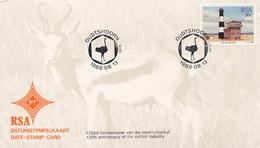 RSA SUD AFRICA - OUDTSHOORN  -  STRUZZO    OSTRICH - Autruches