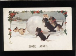 2 Chats Noirs 2 Chats Gris Un Chien Une Boule De Neige édit. Inter Art Co Florence House Comique Séries N° 4436 - Chats