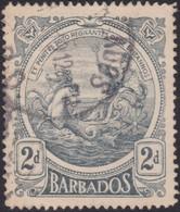 Barbados      .     SG    .   184         .     O    .   Cancelled   .   /    .     Gebruikt - Barbados (...-1966)