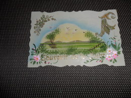 Carte Celluloïd ( 124 )  En Celluloïde  Cellulo - Cartes Postales