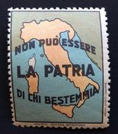 COMITATO ANTIBLASFEMO L'ITALIA NON PUO' ESSERE LA PATRIA DI CHI  BESTEMMIA  ETICHETTA PUBBLICITARIA  ERINNOFILO - Erinnophilie
