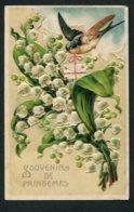 12125  CPA  Souvenir De Printemps : Mésange Portant Une Lettre Et Bouquet De Muguet    1909 - Autres