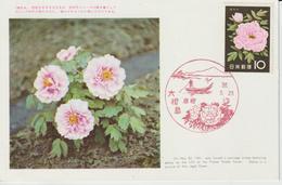 Carte Maximum Japon 1961 Série Fleurs Pivoines 668 - Cartes-maximum