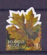 Belgie - 2012 - OBP - 4265 - Plak Een Boomblad - Gestempeld - Belgique