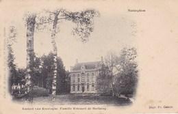 Maldeghem, Maldegem, Kasteel VAn Reezinghe, Familie Rotsaert De Hertaing (pk58305) - Maldegem
