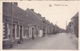 Maldeghem, Maldegem, Den Akker, Louis Delhaize Et Cie (pk58322) - Maldegem