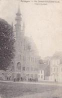 Maldeghem, Maldegem, Het Gemeentehuis Met Linde (pk58326) - Maldegem