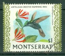 Montserrat: 1970/74   Birds   SG252    $1     Used - Montserrat