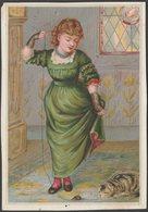 Colman's Double Superfine Mustard, C.1880 - Trade Card - Trade Cards