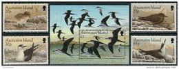 Ascension 1994. Michel #645/48+Bl.#27 MNH/Luxe. Sooty Tern (Ts17) - Ascension (Ile De L')