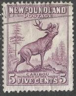 Newfoundland. 1932-38 Definitives. 5c Die II Used P 13½ SG 225c - Newfoundland