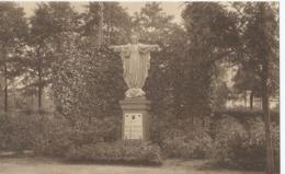 Sysseele - Sanatorium Elisabeth - H. Hart - Statue Du Sacré-Coeur - Brugge