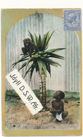NAMIBIE - Idyll D. S. W. Africa - Voir Philatélie - Namibie