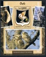 Bloc Sheet  Oiseaux Hiboux Birds Owls  Neuf  MNH ** Sierra Leone 2016 - Colibris