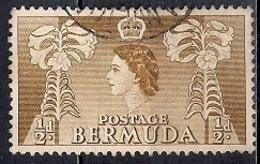 Bermuda 1953 - Local Motives And Queen Elizabeth II - Bermudas