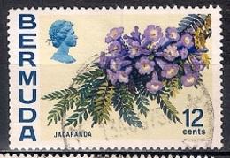 Bermuda 1970 - Flowers - Bermudas