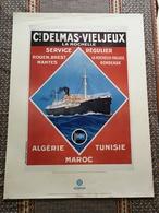 +++ AFFICHE BATEAU / PAQUEBOT MEDEA Service Régulier Entre La France, L'agérie,tunisie Et Maroc DELMAS-VIELJEUX SDV +++ - Affiches