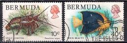 Bermuda 1978 - Wildlife - Bermudas
