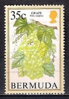 Bermuda 1994 - Flowering Fruits - Bermudas