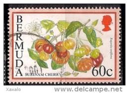 Bermuda 1995 - Flowering Fruits - Bermudas