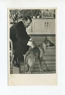 Um 1938 3. Reich Photo Hoffmann Propagandakarte Adolf Hitler Mit Schäferhund Blondi In Haus Wachenfeld - Deutschland