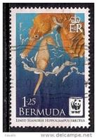 Bermuda 2010 - WWF Issue - Lined Seahorse - Bermudas