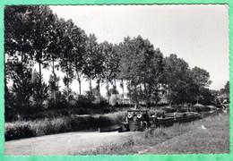 MAROLLES SUR SEINE - LE CANAL ET SON PONT - CPSM PETIT FORMAT - France