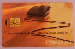 TELECARTE 11/96 SANS UNITE - Frankrijk