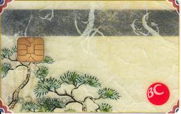 SOUTH KOREA - BC Transparent Bank Card, Sample - Geldkarten (Ablauf Min. 10 Jahre)