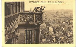 Strasbourg -  Plateforme Cathédrale - Strasbourg
