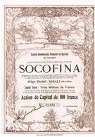 Titre Ancien - SOCOFINA -Société Financière Et Agricole Du Ruanda -Titre De 1928 - N° 21433 - VF *** - Déco - Afrique