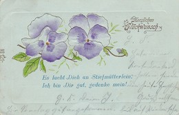 AK Stiefmütterchen - Herzlichen Glückwunsch - Prägedruck - 1902 (40301) - Blumen