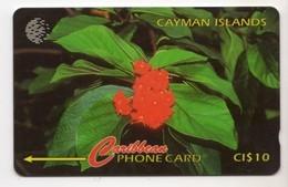 CAYMAN ISLANDS CABLE & WIRELESS MV Cards CAY-94B 1996 10$  CN 94CCIB BROADLEAF FLOWER - Cayman Islands