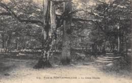 77 - Forêt De FONTAINEBLEAU - Le Chêne Charme - Fontainebleau