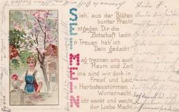 AK Frau Mit Blumen - Sei Mein - Künstlerkarte - Prägedruck - 1903 (40306) - Frauen