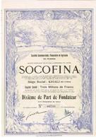Titre Ancien - SOCOFINA -Société Financière Et Agricole Du Ruanda -Titre De 1928 - N° 00738 - VF *** - Déco - Afrique