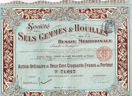 Titre Ancien - Société Des Sels Gemmes & Houilles De La Russie Méridionale - Titre De 1911 - Déco - Russie