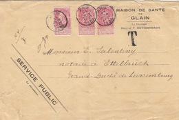 C Lettre (maison De Santé De Glain) Obl. Ans Le 27 Juin 1902 Sur 10c Rose X 3 = 2°éch. étr. Pour Ettelbrück + T (0,30) - 1893-1907 Armoiries