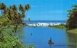 R064853 Blanchisse Use. Trinidad. Noel P. Norton. 1983 - Cartes Postales