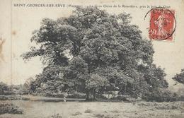 DPT 53 SAINT GEORGES SUR ERVE Le Gros Chêne De La Retardière Près Le Bois De Crun 1909 CPA BE - Autres Communes
