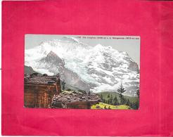 SUISSE - Die Jungfrau V. D. Wengernalp Aus  - BES3/SAL1 - - BE Bern