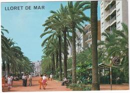 Lloret De Mar - Paseo Jacinto Verdaguer - (Costa Brava - Espana) - Gerona